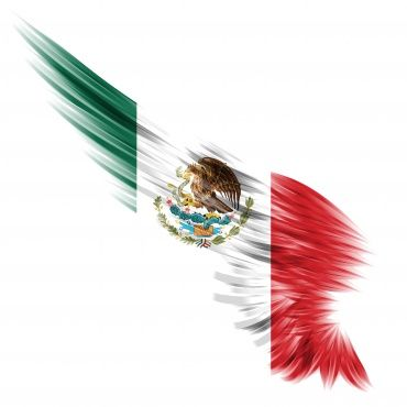Omnicomm moves into Mexico